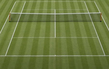 grass tennis courts, grass courts, lawn tennis court, lawn court tennis, lawn court